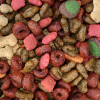 Rotating dog food to keep larger stock for emergencies